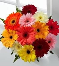Colorful World Gerbera Daisy Bouquet