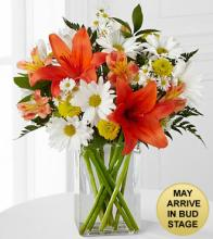 Sunrise Sentiments Bouquet